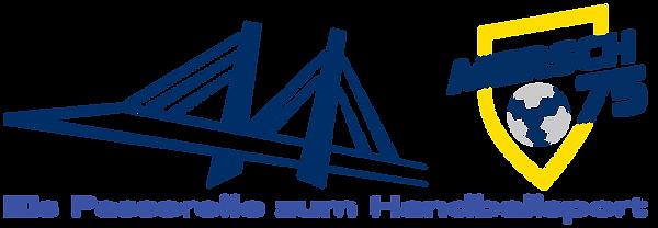 Eis Passerelle zum Hanballsport.png