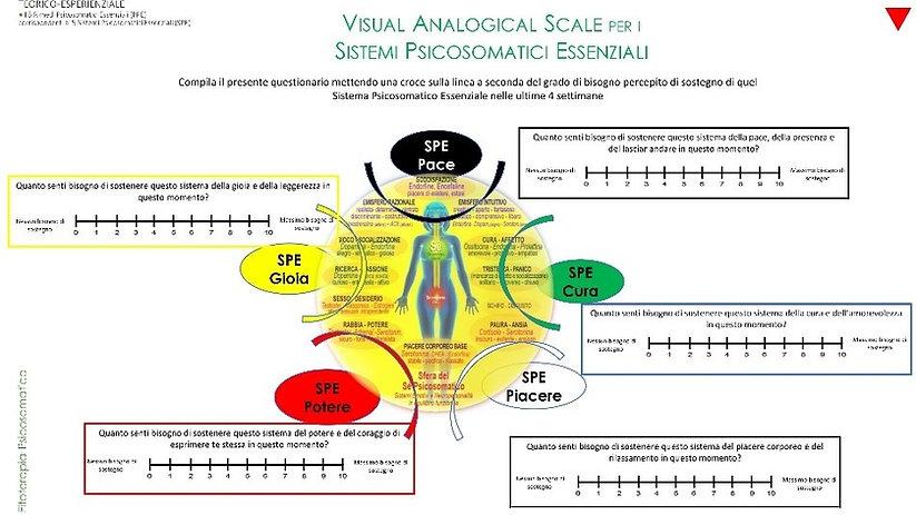 visual analogic spe.jpg
