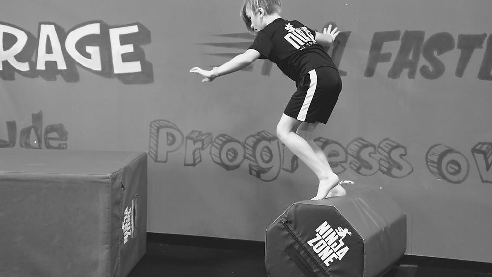 NinjaZone agility