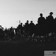 Cavalgada de São Francisco - Maria Eduarda Cavalcante (UEPB)