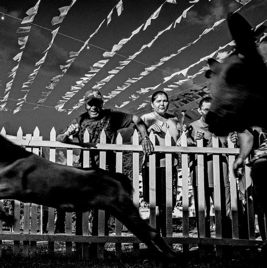 Festa do Bode Rei - Antônio Ronaldo (Correio da Paraíba)