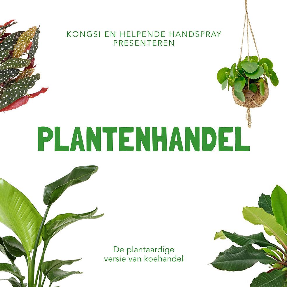 Plantenhandel vierkant.jpg
