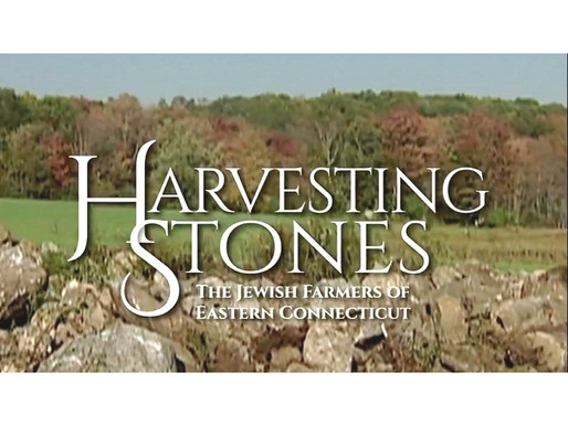 """NEHFES Featured in Public Television Documentary, """"Harvesting Stones"""""""