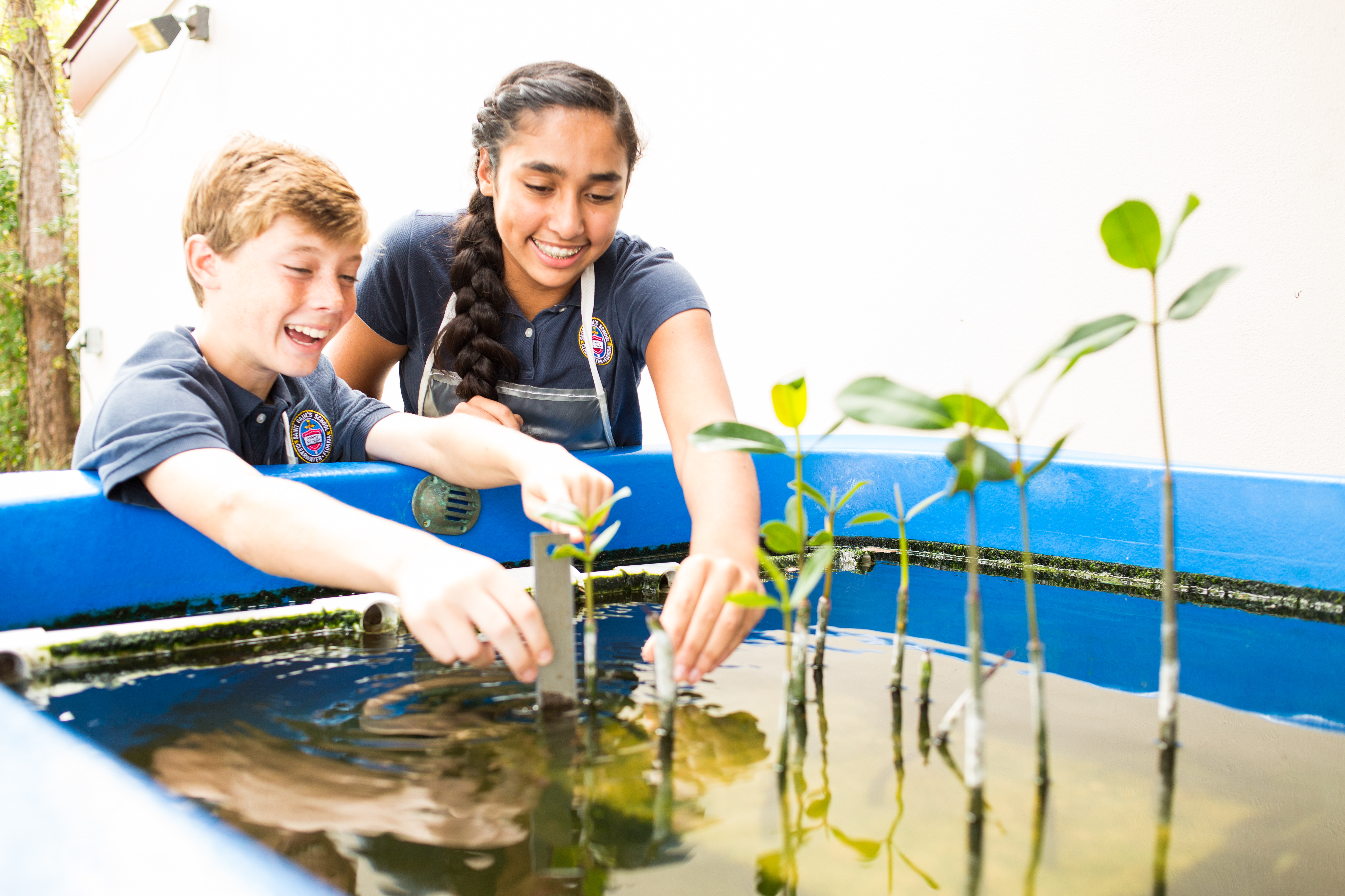 Aquaponics at Saint_Paul's