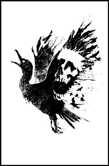 Illustration for The Cormorant