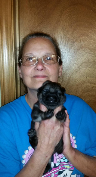 Upcoming Puppy Placement!! Letty