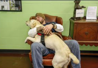 """Service Dogs Aid Veterans with PTSD"" article"
