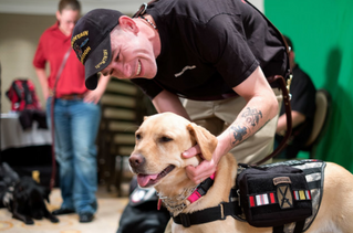 """A New Act Could Provide Veterans who have with PTSD Service Dogs"" article"
