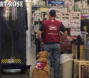 """Texas Lowe's hires veteran and his service dog"" news article"