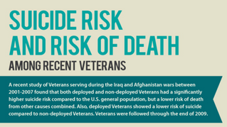 Graphic: War Veterans' Suicide Risk