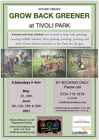 Free family forest school activity proje