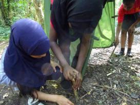 using tools, appreciating nature