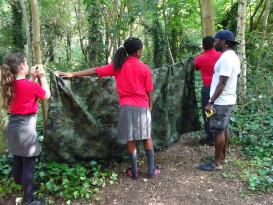 building a den/shelter