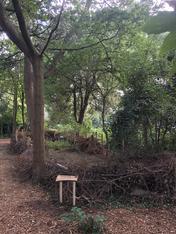 Natural Sign for Woods' Deadwood Hedge