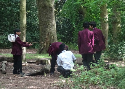 School Insect Survey Streatham Common La