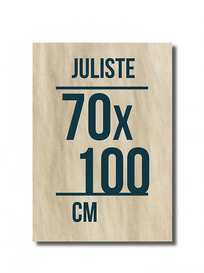 Juliste 70 x 100 cm