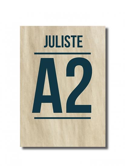 Juliste A2 1-puoli