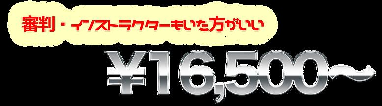 33,000円.png