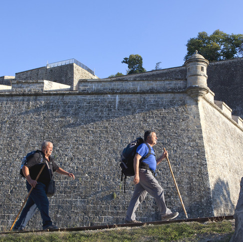 ​​Fortifications, Military Heritage and Pandemic: an invitation to search for ways and solutions