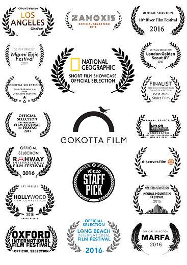 Film awards and laurels