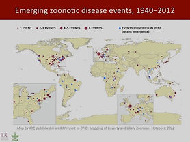 emerging zoonotic diseases events