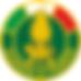 guardia_di_finanza.png