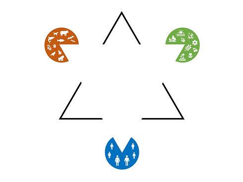 The One Health Triangle Zucca P 2021.jpg