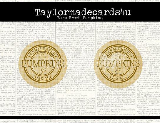 Farm Fresh Pumpkin Labels