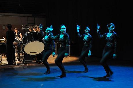 jornada 2013 danca.jpg