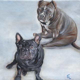 """""""Queen Cleo & Caesar Emilio"""" (2021) 20x20 inch Oil on canvas"""