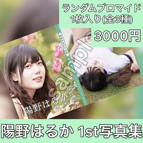 陽野はるか 1st 写真集 WEB特典付