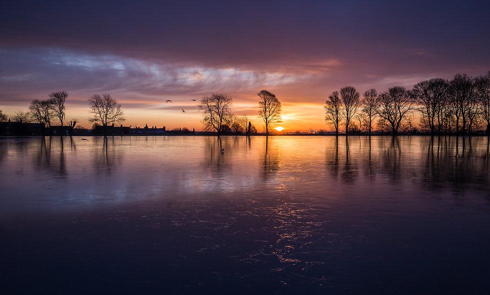 Frozen Harold Park