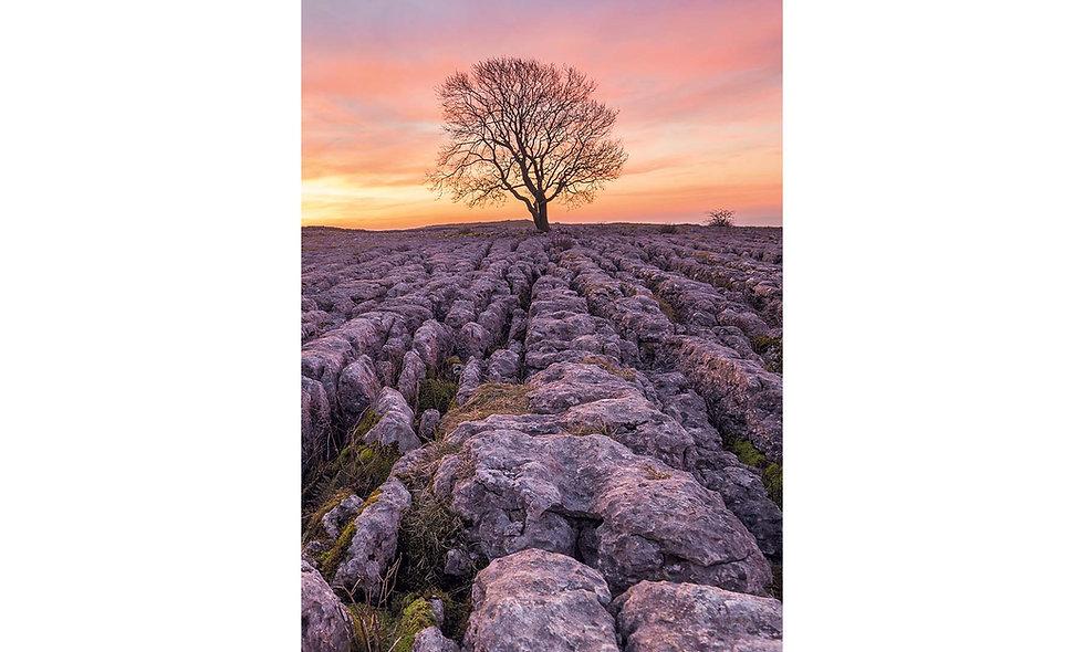 Malham limestone