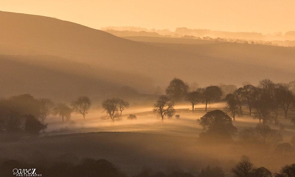 Derbyshire in the golden mist