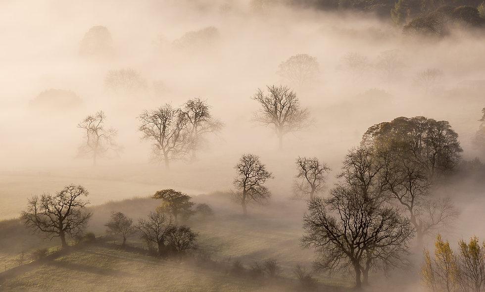 Derbyshire in the mist