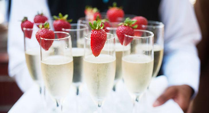 ChampagneTray_520x282.jpg
