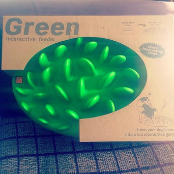 Review: Company of Animals Green Interactive Slow Feeder