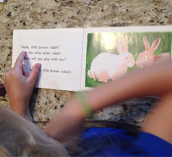 Lesson 22 Guided Reading .jpg