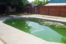 Green Pool 002.jpg