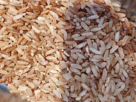 kerala matta rice.jpg