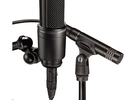 How to use a mic?  Point it at the sound!  Is it really that easy?