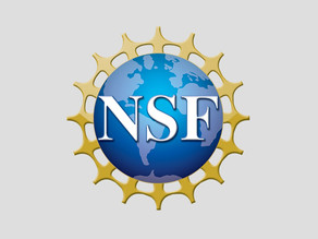Vuetech Joins NSF I-Corps Fall 2020 Cohort