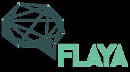 FLAYA-Logo-kleur.png