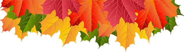 95-951982_pile-of-leaves-png.png
