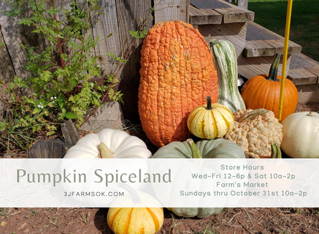 The Farm's Market: Pumpkin Spiceland ~ September 20th