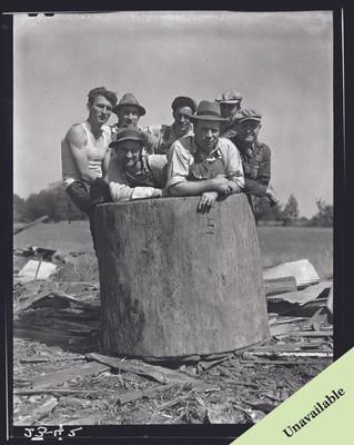 Group of men in sycamore bin