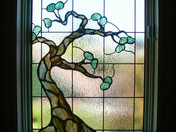 Small-Tree-Of-Life.jpg