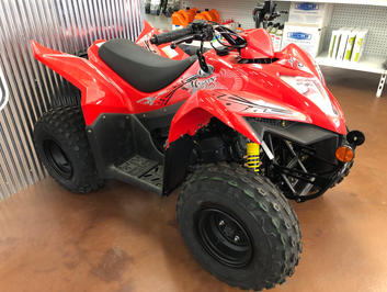 1x ONLY - NEW Mongoose 90S ATV