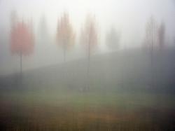 Autumn©Victor