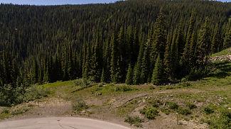 Ridge-53-2-0121.jpg
